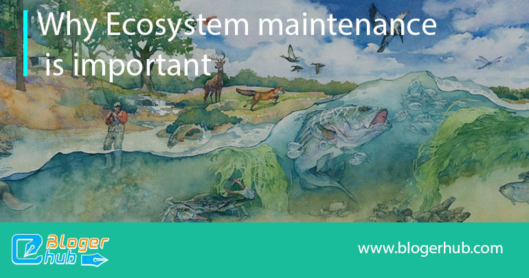 Why Ecosystem maintenance is important