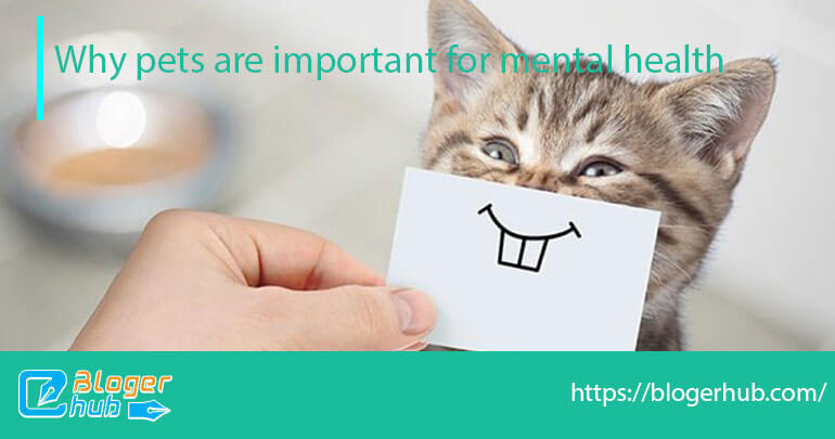 Why pets are important for mental health
